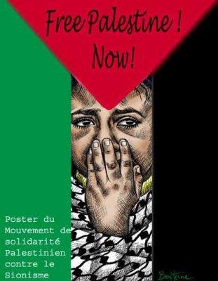 El FSM Túnez 2013 alberga como uno de sus principales ejes una plataforma internacional de solidaridad con el pueblo palestino http://www.fsm2013.org/en/node/167